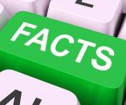 Аренда машин: интересные факты, о которых вы даже не задумывались 18